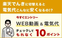 WEB動画&電気代チェックして10ポイント